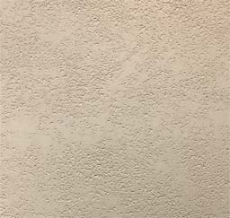 Polished Plaster: Pitted