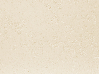 Polished Plaster PT L4131
