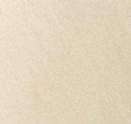 Polished Plaster SM X0065
